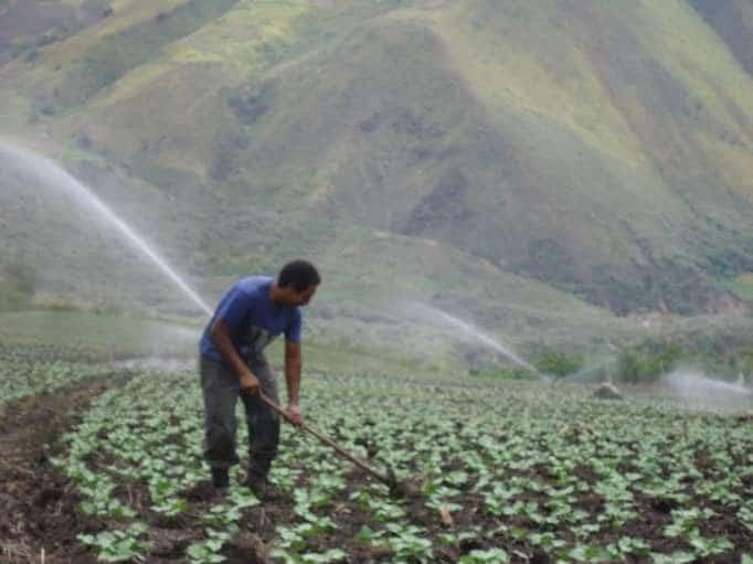 Sistem Irigasi Pertanian